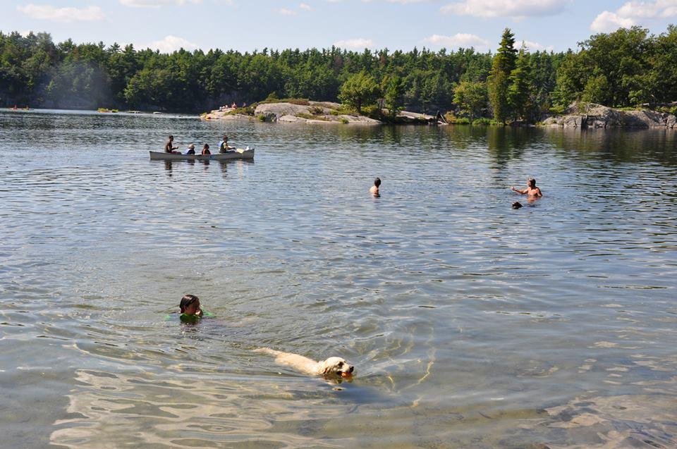 Port Burwell Provincial Park Dog Beach